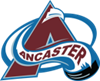 AMHL_logo_small.png